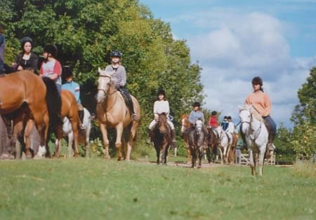 Eden Hill Horse Outing